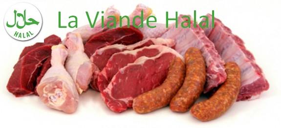 Viande-Halal-test